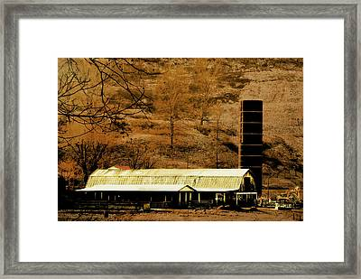 Winter Morning At The Cattle Farm Framed Print by Chastity Hoff