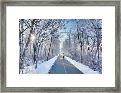 Winter Morning In The Park Framed Print by Alexey Stiop