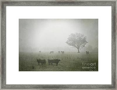 Winter Morning Londrigan 5 Framed Print by Linda Lees