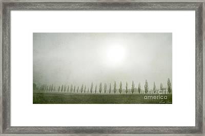 Winter Morning Londrigan 7 Framed Print by Linda Lees