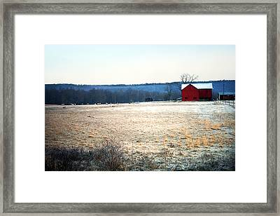 Winter Morning  Framed Print by Meaghan Troup