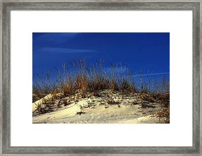 Framed Print featuring the photograph Winter Morning On The Dunes by Bill Swartwout