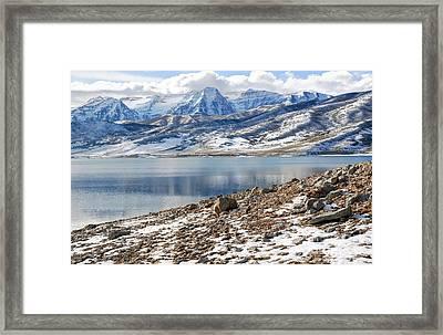 Winter Mt. Timpanogos And Deer Creek Reservoir Framed Print