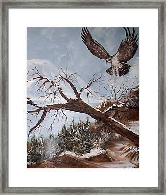 Winter Nesting Framed Print by Martha Mullins