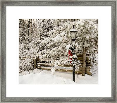 Winter Framed Print by Nick Mares