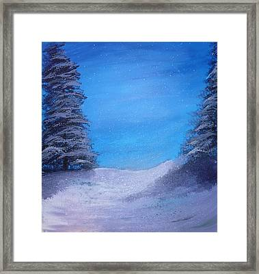 Winter Night Framed Print by Dan Haley
