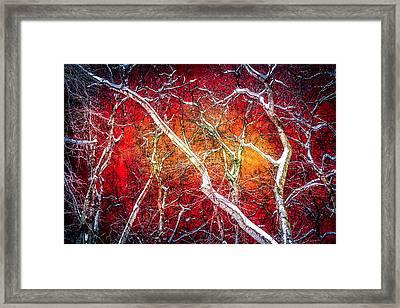 Winter Night In The City Framed Print by Alexander Senin