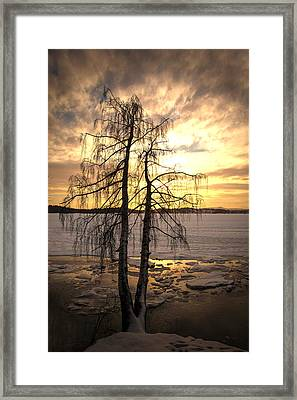 Winter Night3 Framed Print by Thomas Berger