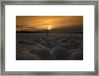 Winter Night4 Framed Print by Thomas Berger