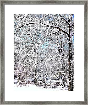 Winter On A Spring Day Framed Print