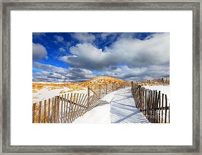 Winter On Cape Cod  Framed Print