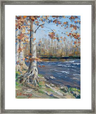 Winter On The Little Harpeth Framed Print by Sandra Harris