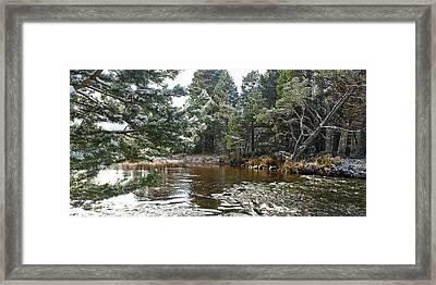 Winter On The Loch Near Aviemore Framed Print