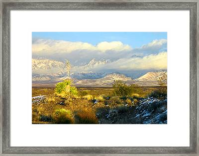 Winter In The Organ Mountains Framed Print