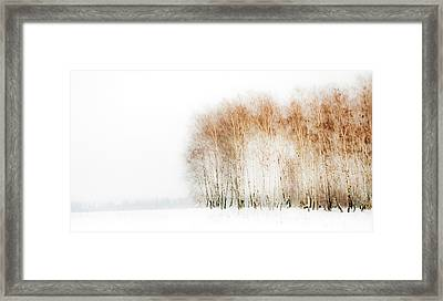Winter Painting Iv. Aquarel By Nature Framed Print by Jenny Rainbow
