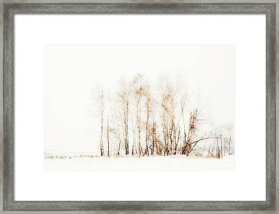 Winter Painting Vi. Aquarel By Nature Framed Print by Jenny Rainbow