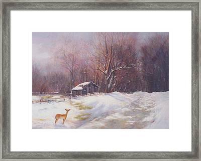 Winter Palette Framed Print by Howard Scherer