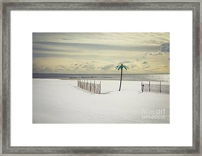Winter Paradise Framed Print by Evelina Kremsdorf