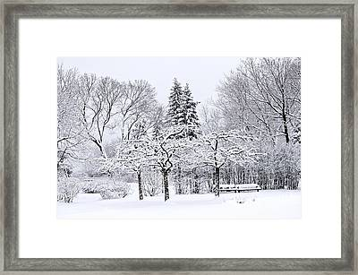 Winter Park Landscape Framed Print by Elena Elisseeva
