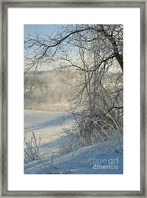 Winter Pastorale IIi Framed Print