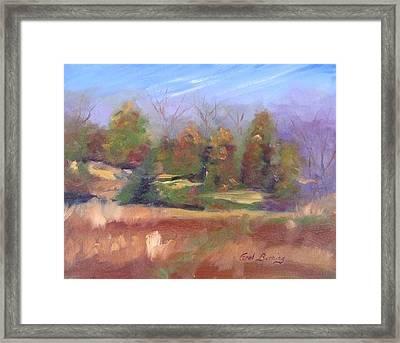 Winter Pasture Framed Print by Carol Berning