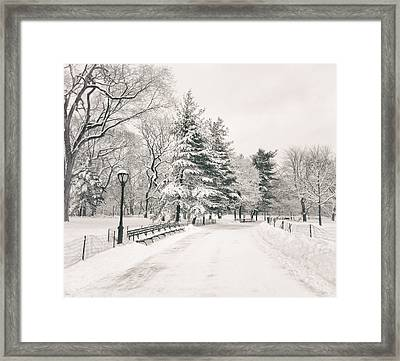 Winter Path - Snow Covered Trees In Central Park Framed Print by Vivienne Gucwa