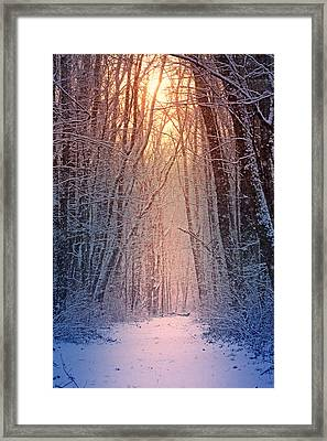 Winter Pathway Framed Print by Rob Blair
