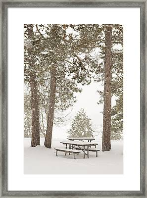 Winter Picnic By The Lake Framed Print by Tim Grams