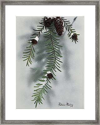 Winter Pine Cones Framed Print