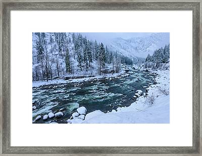 Winter Playground Framed Print by Dan Mihai