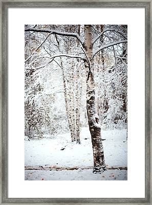 Winter Poetry Framed Print by Jenny Rainbow