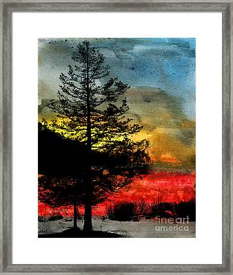 Winter Poise Framed Print