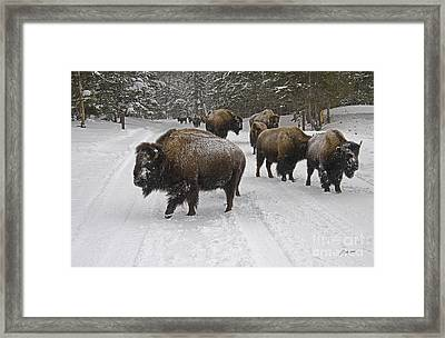 Winter Procession-signed Framed Print
