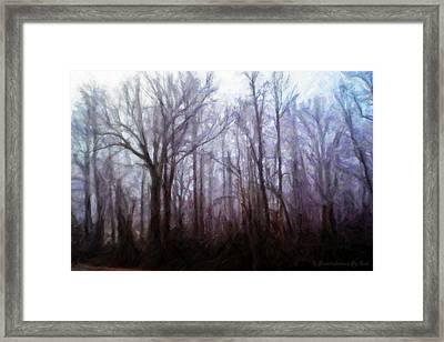 Winter Rain Framed Print by Melody McBride