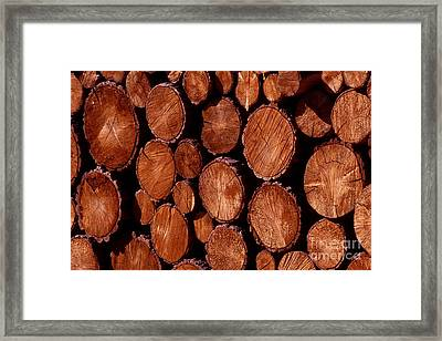 Winter Ready Framed Print by Paul W Faust -  Impressions of Light