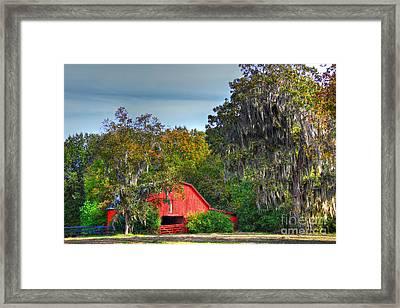 Winter Red Framed Print by Leslie Kirk