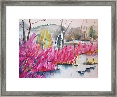 Winter Redtwig Dogwoods Framed Print