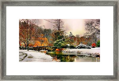 Winter Reflection Framed Print