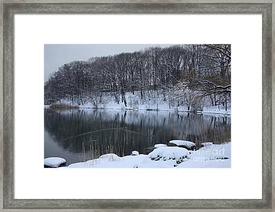 Framed Print featuring the photograph Winter Reflections by Dora Sofia Caputo Photographic Art and Design