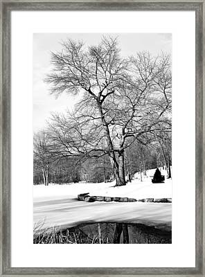 Winter Reflects In Black And White Framed Print by Karol Livote