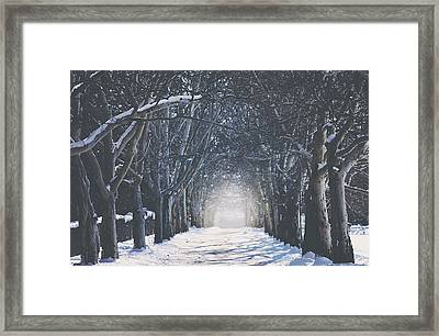 Winter Road Framed Print by Carrie Ann Grippo-Pike