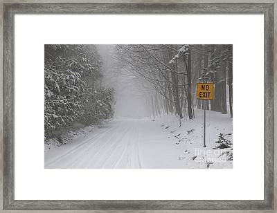Winter Road During Snow Storm Framed Print by Elena Elisseeva