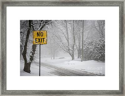 Winter Road During Snowfall Iv Framed Print by Elena Elisseeva