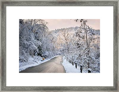 Winter Road In Snowy Forest Framed Print