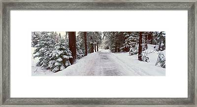 Winter Road Near Lake Tahoe, California Framed Print