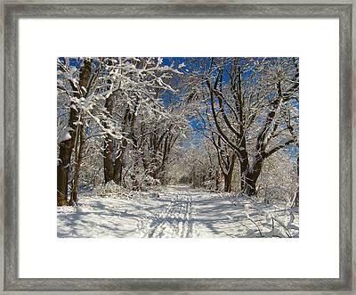 Winter Road Framed Print by Raymond Salani III