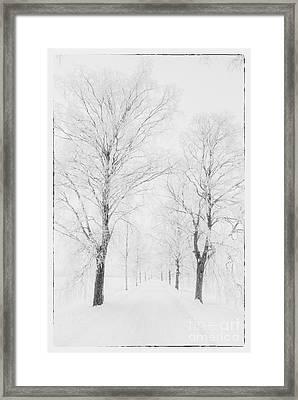 Winter Road Framed Print by Veikko Suikkanen