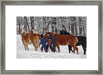 Winter Round-up Framed Print by Brian Graybill