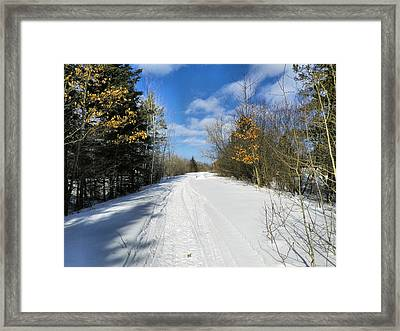Winter Scape 5 Framed Print