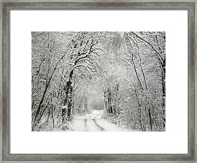 Winter Scene 2 Framed Print